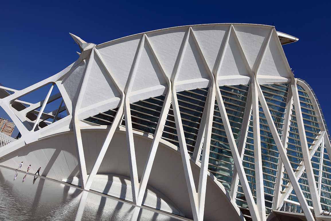 Talleres científicos, visitas guiadas, projecciones IMAX en 3D forman la oferta cultural de la Ciudad de las Artes y las Ciencias para el puente de diciembre