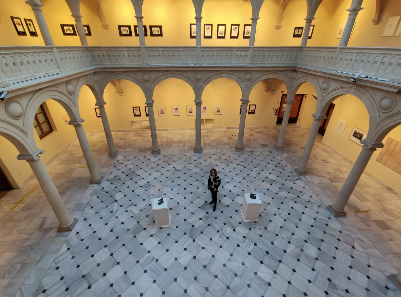 El Centro Cultural La Asunción se abre a la naturaleza gracias al 'Arbolario_Olmo' de Teresa Tomás Villarías