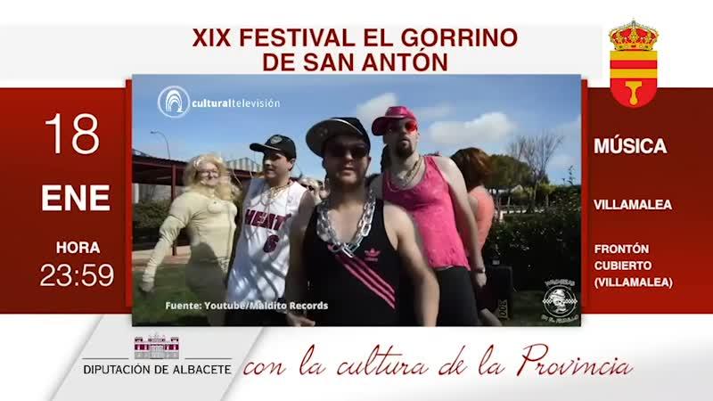 XIX FESTIVAL EL GORRINO DE SAN ANTÓN