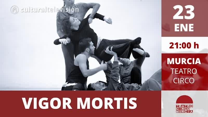 VIGOR MORTIS