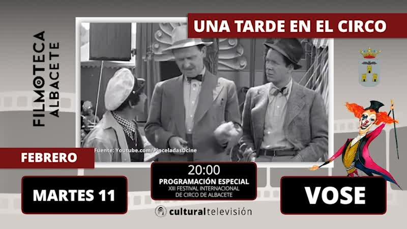 UNA TARDE EN EL CIRCO | XIII FESTIVAL INTERNACIONAL DE CIRCO DE ALBACETE