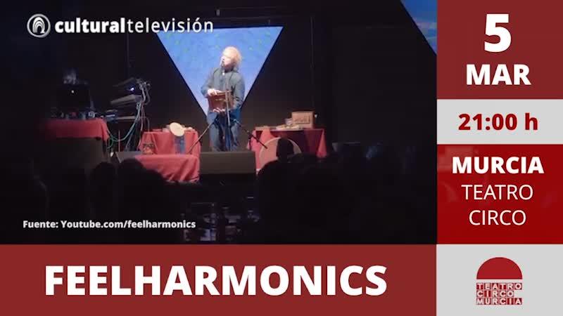 FEELHARMONICS