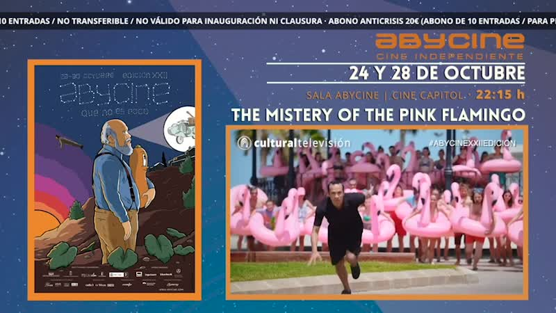 THE MISTERY OF THE PINK FLAMINGO | ABYCINE 2020