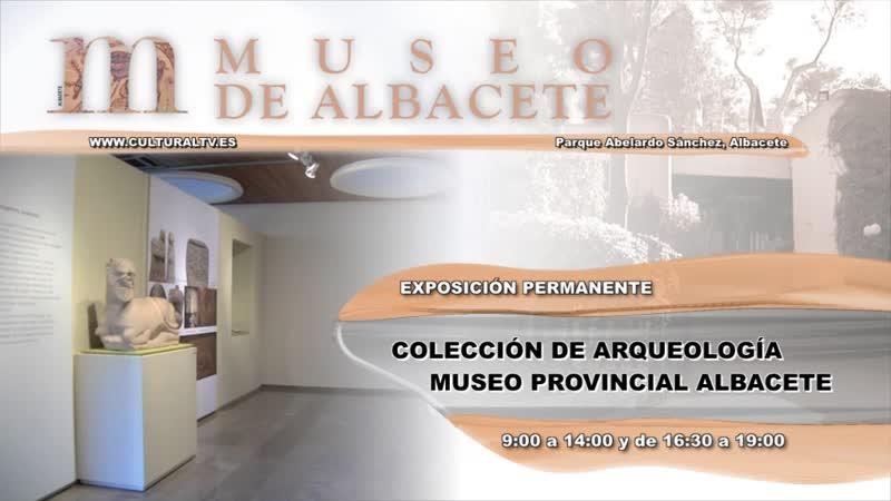 COLECCIÓN DE ARQUEOLOGÍA DEL MUSEO PROVINCIAL DE ALBACETE (EXPOSICIóN PERMANENTE)