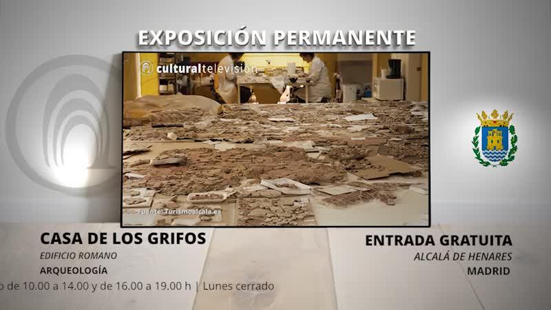 CASA DE LOS GRIFOS | COMPLUTUM CIUDAD ROMANA