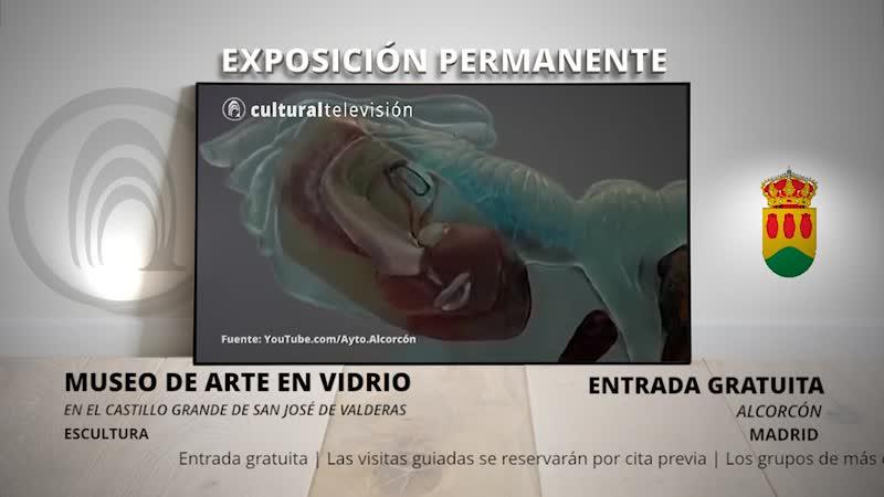 MUSEO DE ARTE CONTEMPORÁNEO EN VIDRIO
